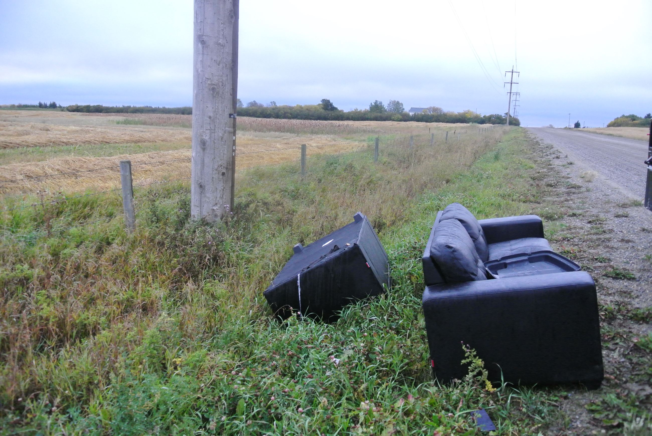 Couches dumped on side of road