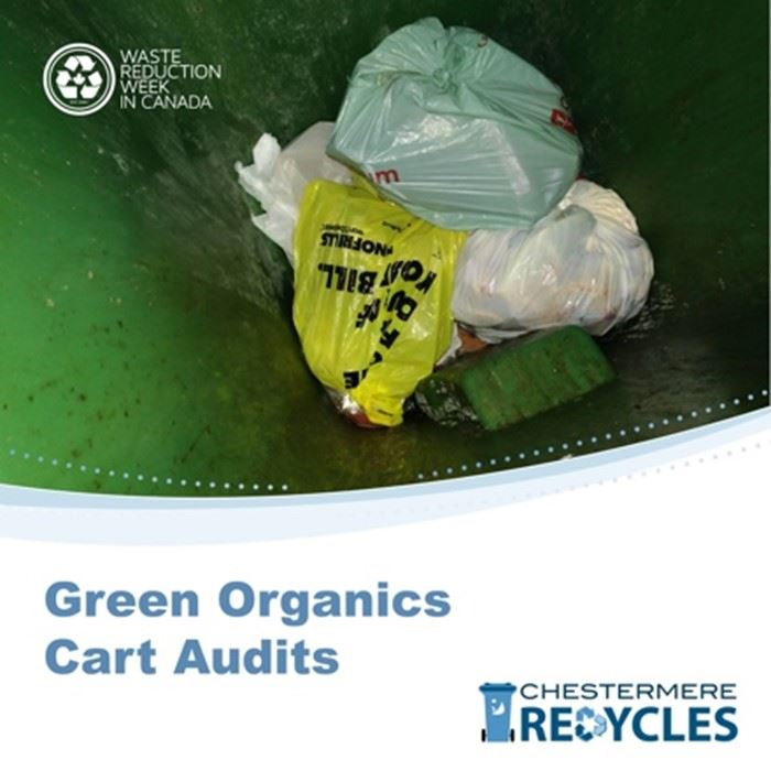 Green Cart Audits