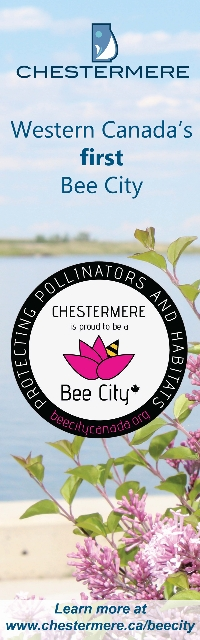 Bee City Chestermere banner Final (200x640).jpg